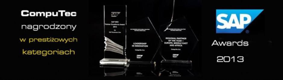 2013 –SAP Business One Global Solution Partner Award